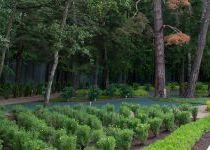 Парк поселка Малое Сареево